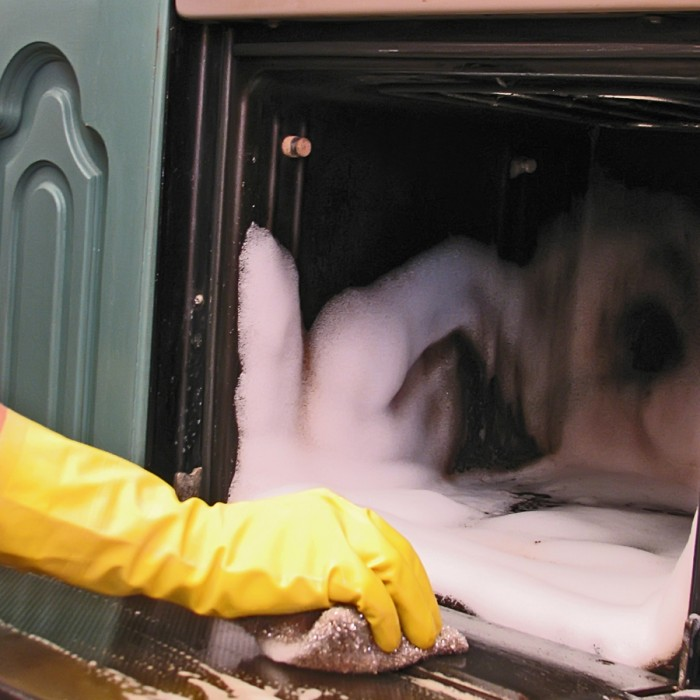 Cleaning Test Method DCC-12 | Guidelines for Screening the Efficacy of Oven Cleaners image